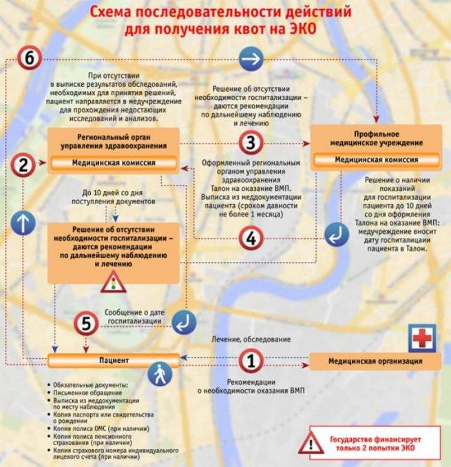 схема действий для получения квот на ЭКО